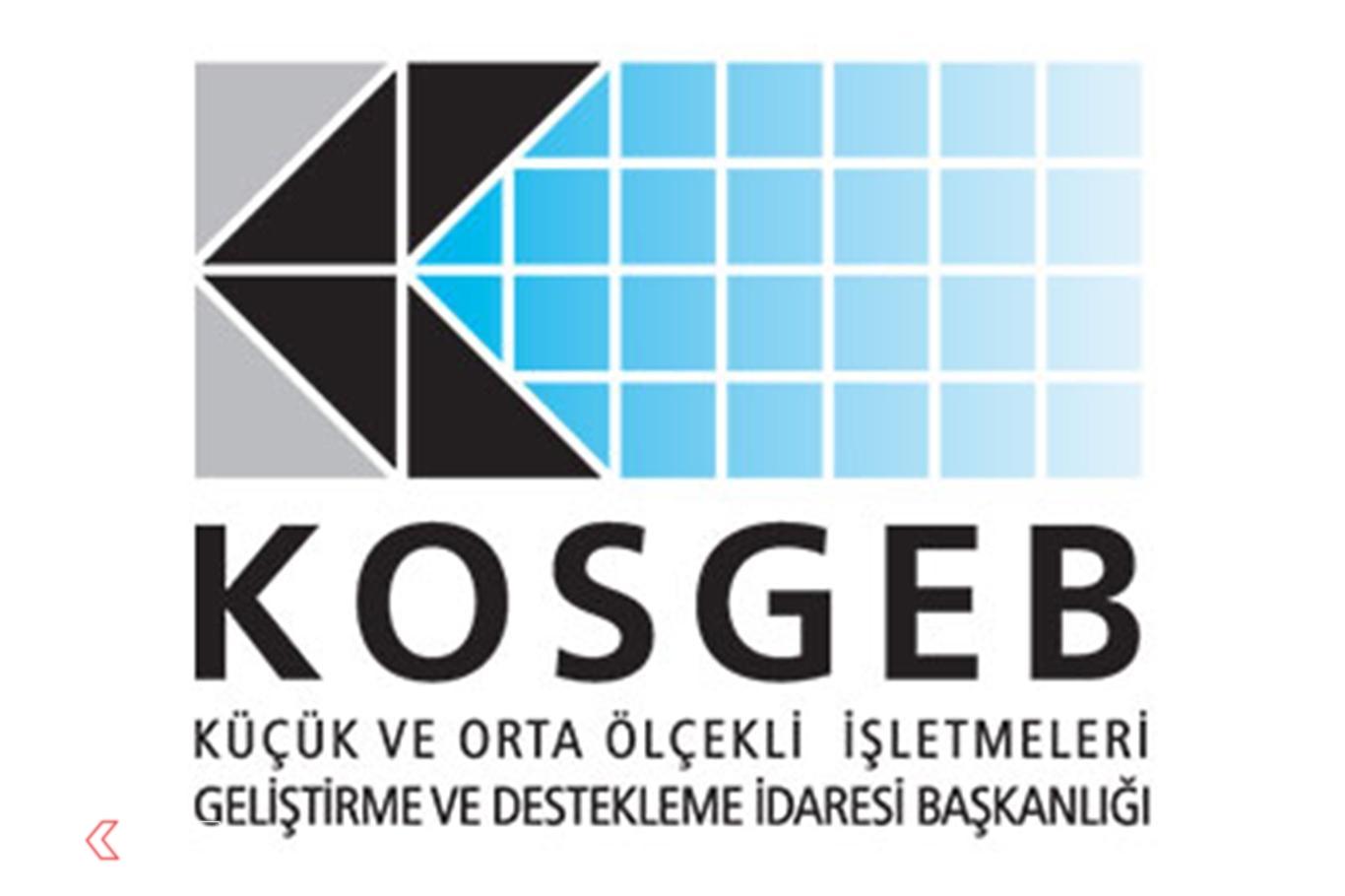 e-KOSGEB