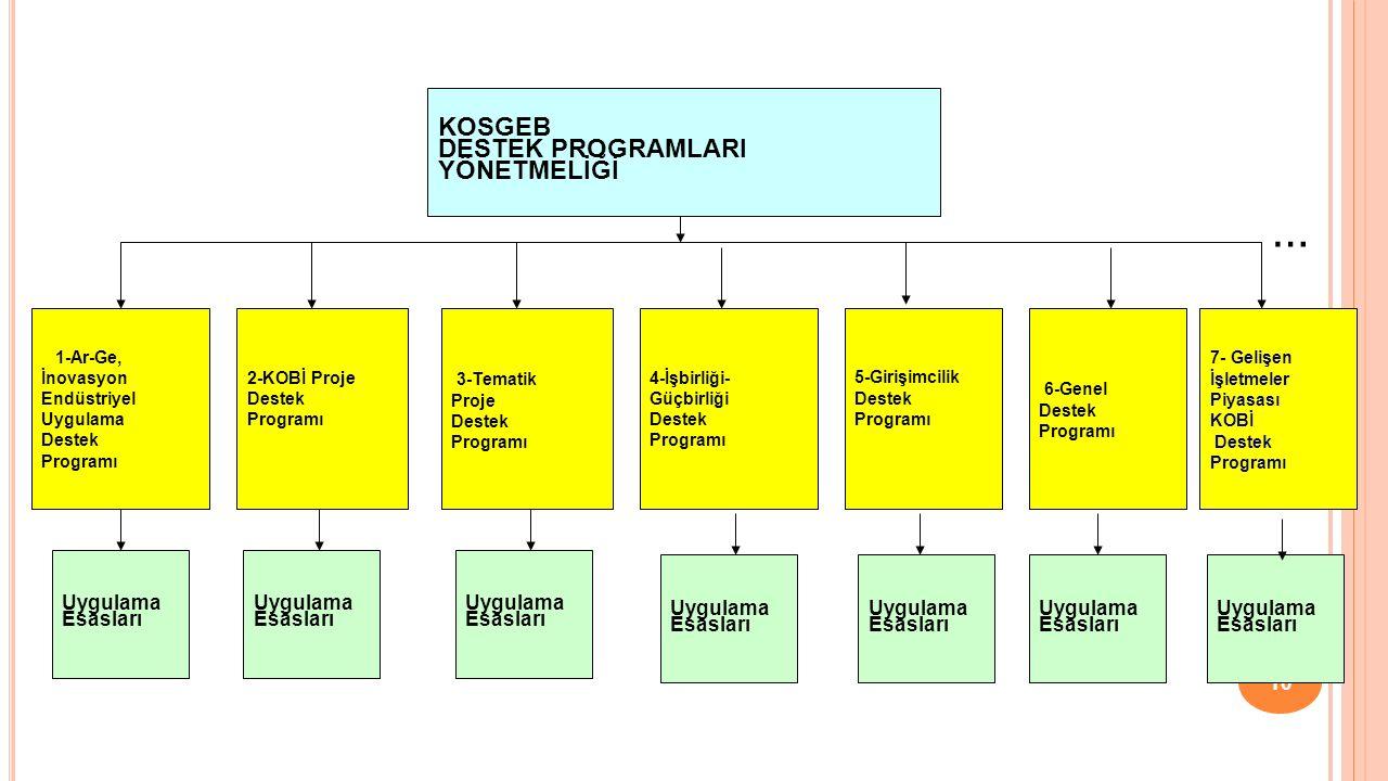 Tematik Proje Destek Programı